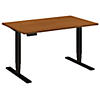 48W x 30D Height Adjustable Standing Desk